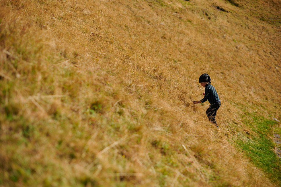 _NZ60468 JPEG HD sRGB.jpg
