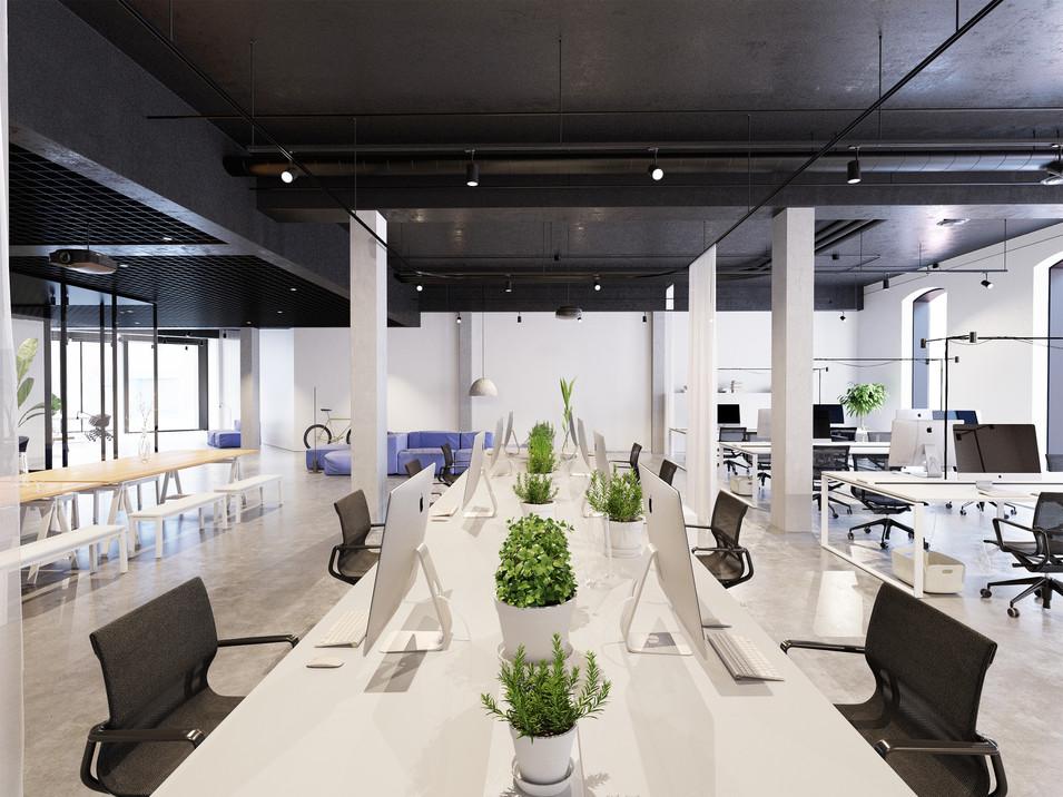 Juri Zele office