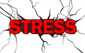 Handle Stress In the Moment – The Body Heals When it is Calm