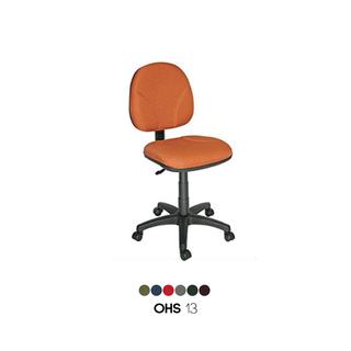 OHS-13