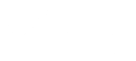 tiny-miracles-white-logo_edited.png