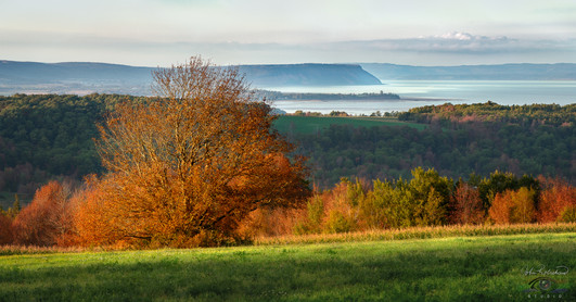 ANNAPOLIS VALLEY VIEW