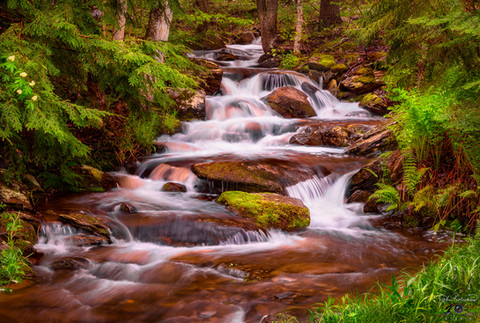 WATER FALLS SOFTLY