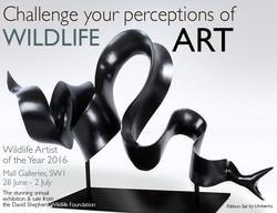 Wildlife Artist of the Year 2016
