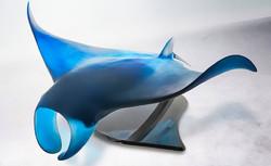 Manta ray. UMBERTO by DAUM