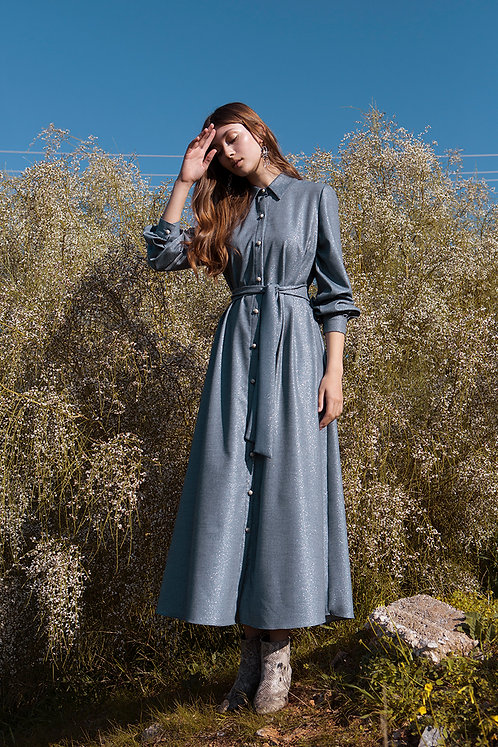 Odine shirtdress