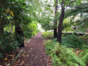 Entrance to Wildflower Garden