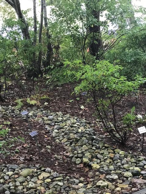 Craviso Garden