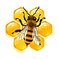 bee%20image_edited.png