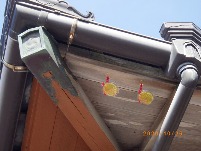 鳥の忌避剤設置 長崎市