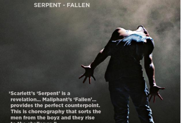 theTALENT 2013 DVD