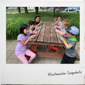 WestminSnapshots (8).png