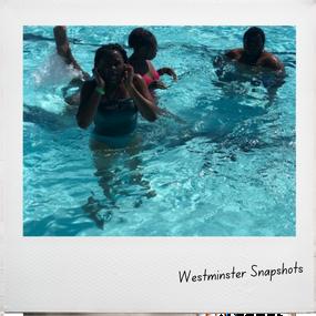 WestminSnapshots (6).png