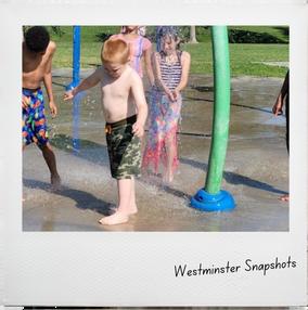 WestminSnapshots (4).png