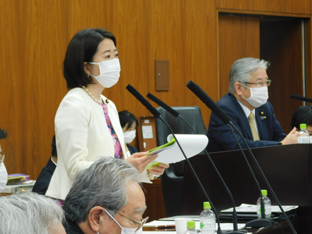 11月19日 新型コロナウイルス感染症対策等に関する件で質問