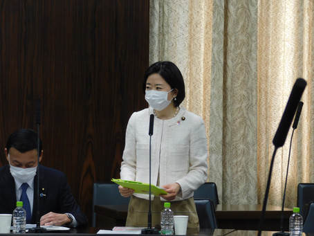 3月23日参議院災害対策特別委員会にて質問