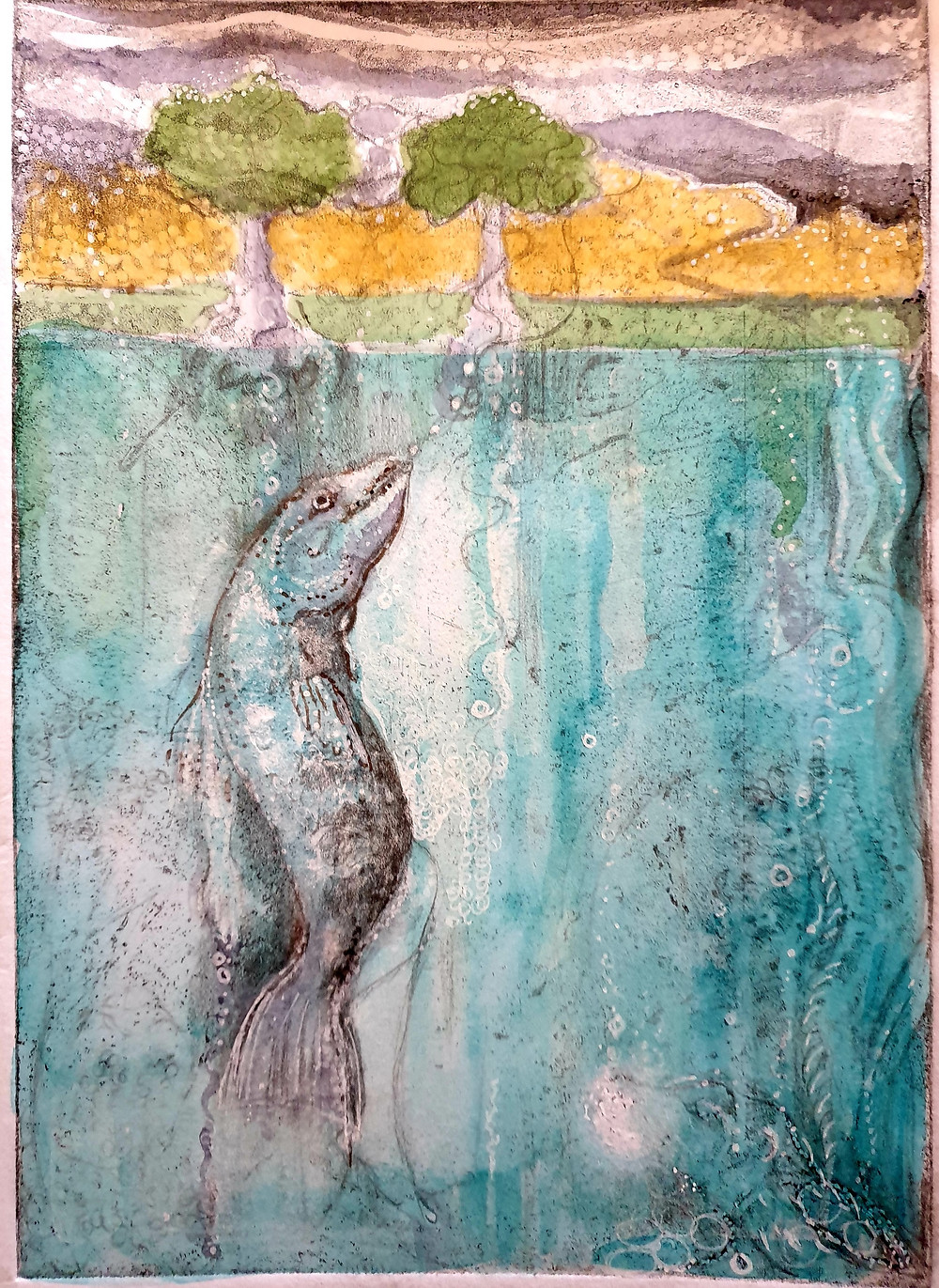 Salmon of Llyn Llyw. Etching and Watercolour.