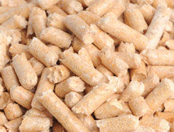 Wholesale Wood Pellets