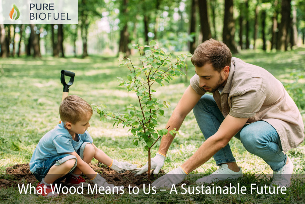 What Wood means to us a sustainable future