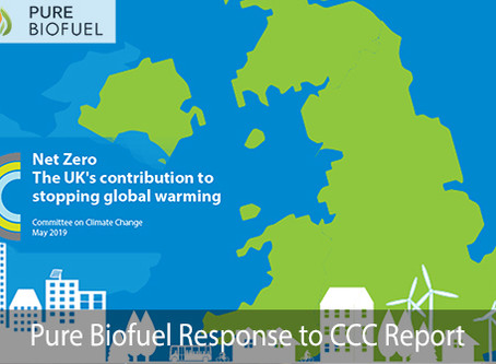 Net Zero 2050: Our support and response to todays CCC Report