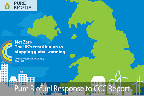 Committee on Climate Change Report 2050 Carbon Biomass Wood Pellets Pure Biofuel Response