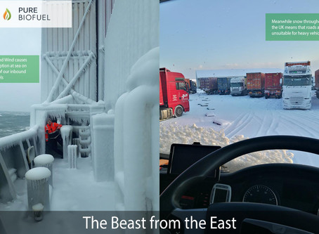 The Beast from the East Recap