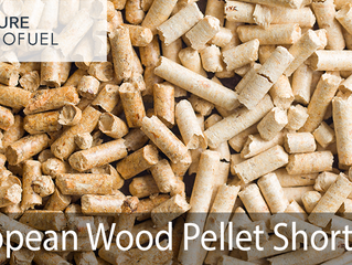 Why is there a Wood Pellet Shortage?