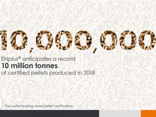 Record Production of ENplus Wood Pellets