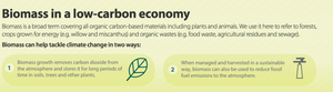 Biomass Wood Pellets in a low-carbon economy
