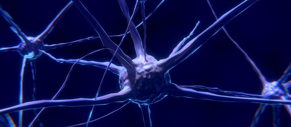 Les neurotransmetteurs : Que sont-ils ?