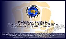 CREDENCIAL MEMBESIA ITF 2.jpeg