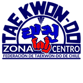 ZONA CENTRO.png