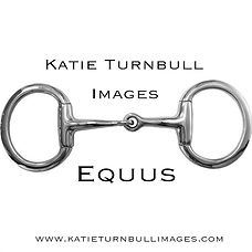 equusimage.jpg
