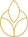 Evolve Medispa Logo