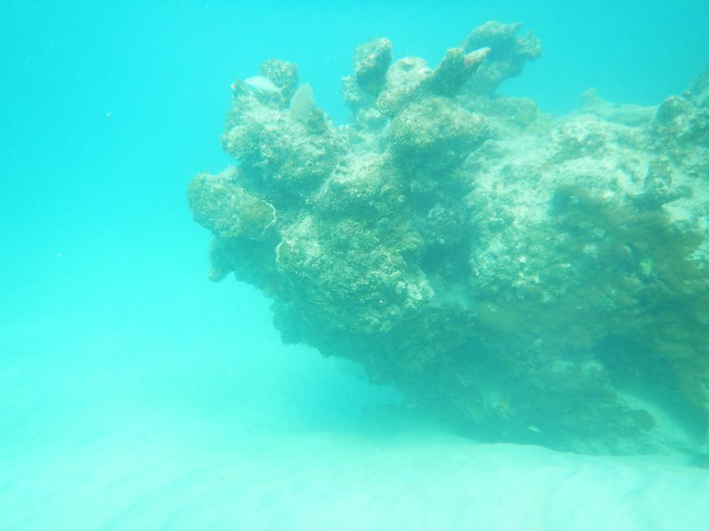 Cinnamon Bay, St. John, US Virgin Islands