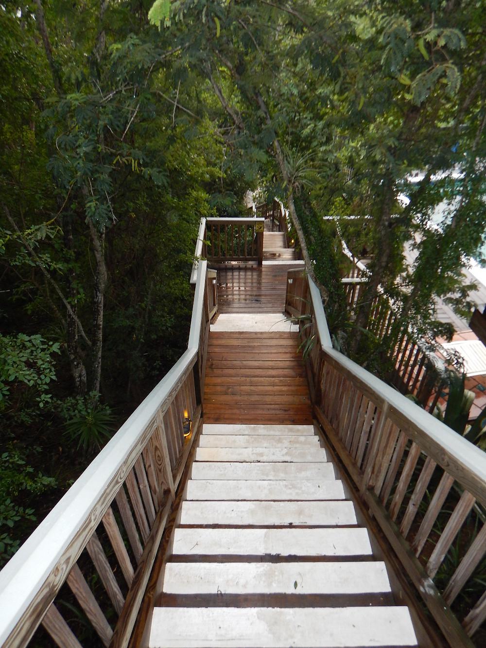 Stairs, Concordia, deck, sunlight, St. John, Salt Pond Bay, travel, eco tent, eco resort