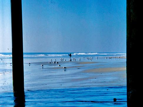 surf_vintage_5