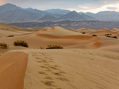 dunes - death valley