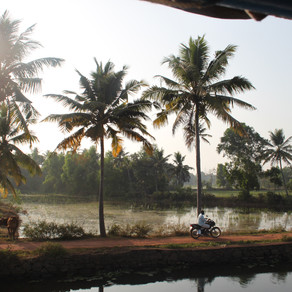 India - Varkala and a trip through the backwaters of Kerala