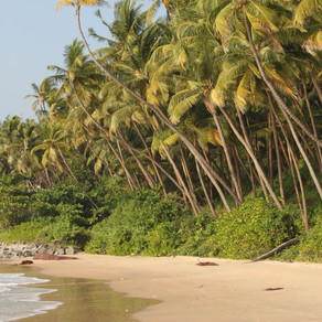 India - dreamy beaches in the north of Kerala