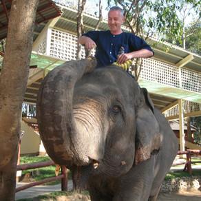 Thailand - I found my dream job