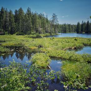 Ånnaboda Lake, Örebro, Sweden