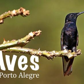Aves de Porto Alegre (Birds of Porto Alegre)