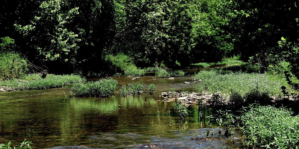 Creek Aerial Photoshoot