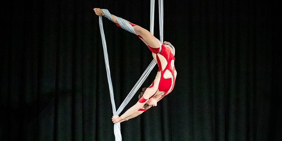 Silks Workshop with Jeanette Sealy