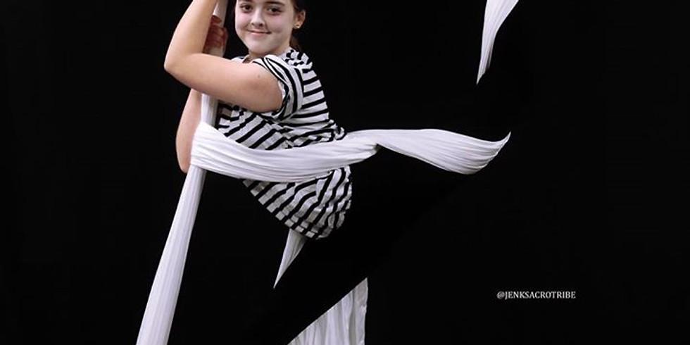 Aerial Silks and Acrobatics for Homeschoolers
