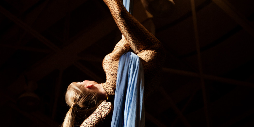 Favorite Silks Combos & Drops - Waverly Jones Workshop