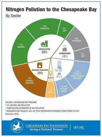 Nitrogen pollution infographic.jpg