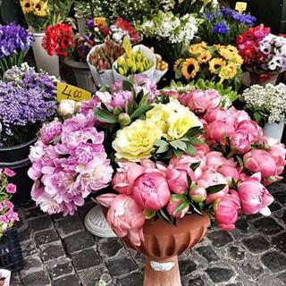 Campo dei fiori