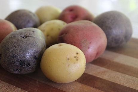 red-white-blue-potato-close-up.jpg